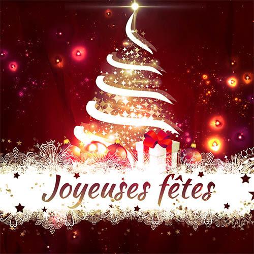 Joyeuses Fêtes - La Fontenaisienne Gymnastique Fontenay le Comte 85200  Vendée